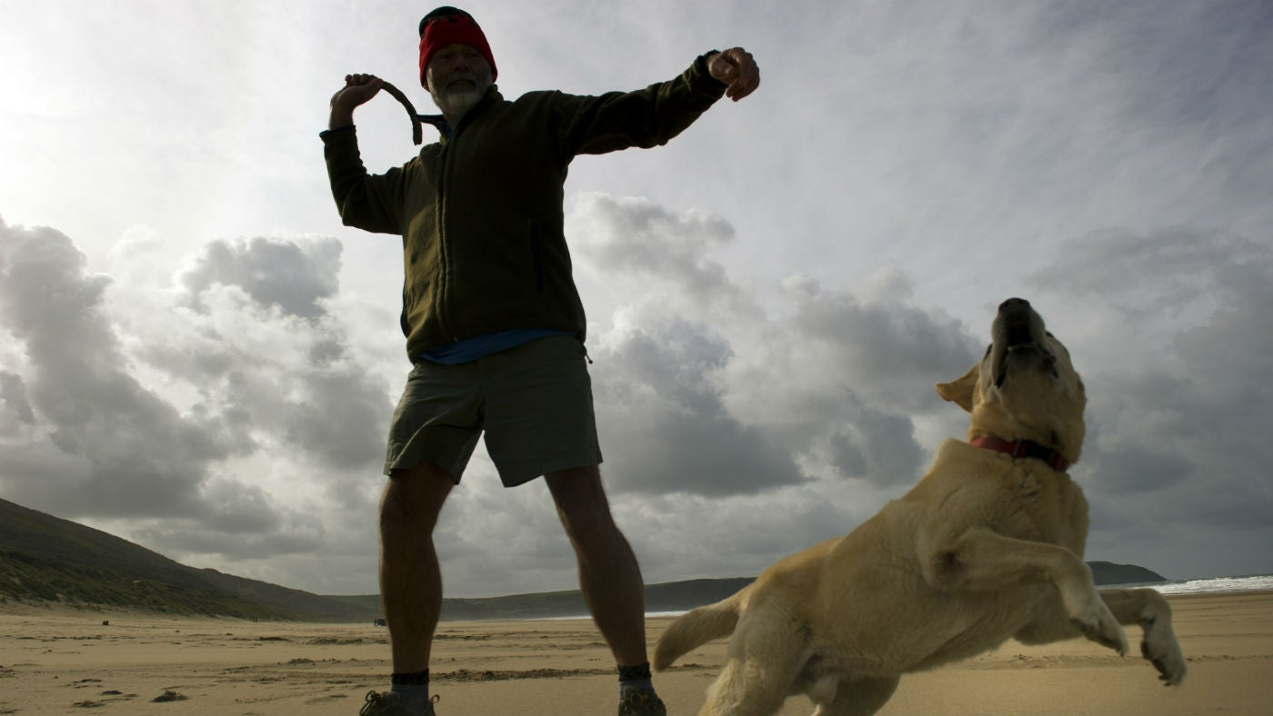 Man throwing a stick along the beach for his dog