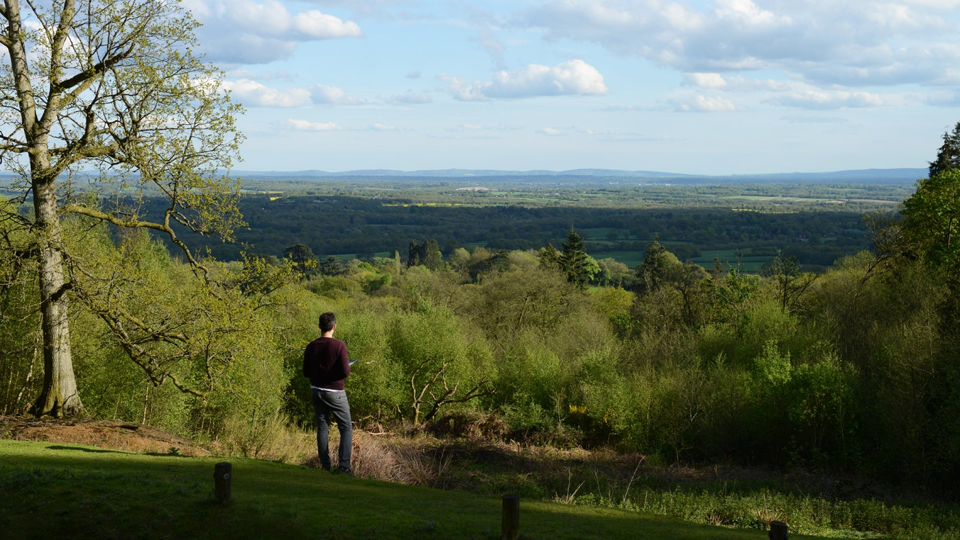 The view south at Leith Hill in Surrey