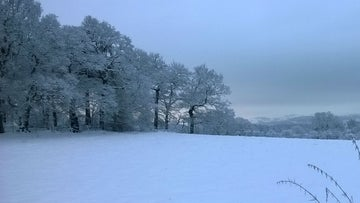 Snow clings to the trees and fields at Alderley Edge Cheshie