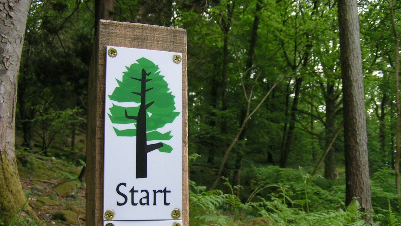 The starter post of the tree trail walk