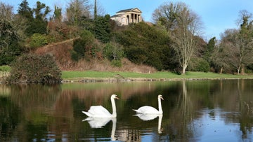 Temple water at Castle Ward with two swans swimming