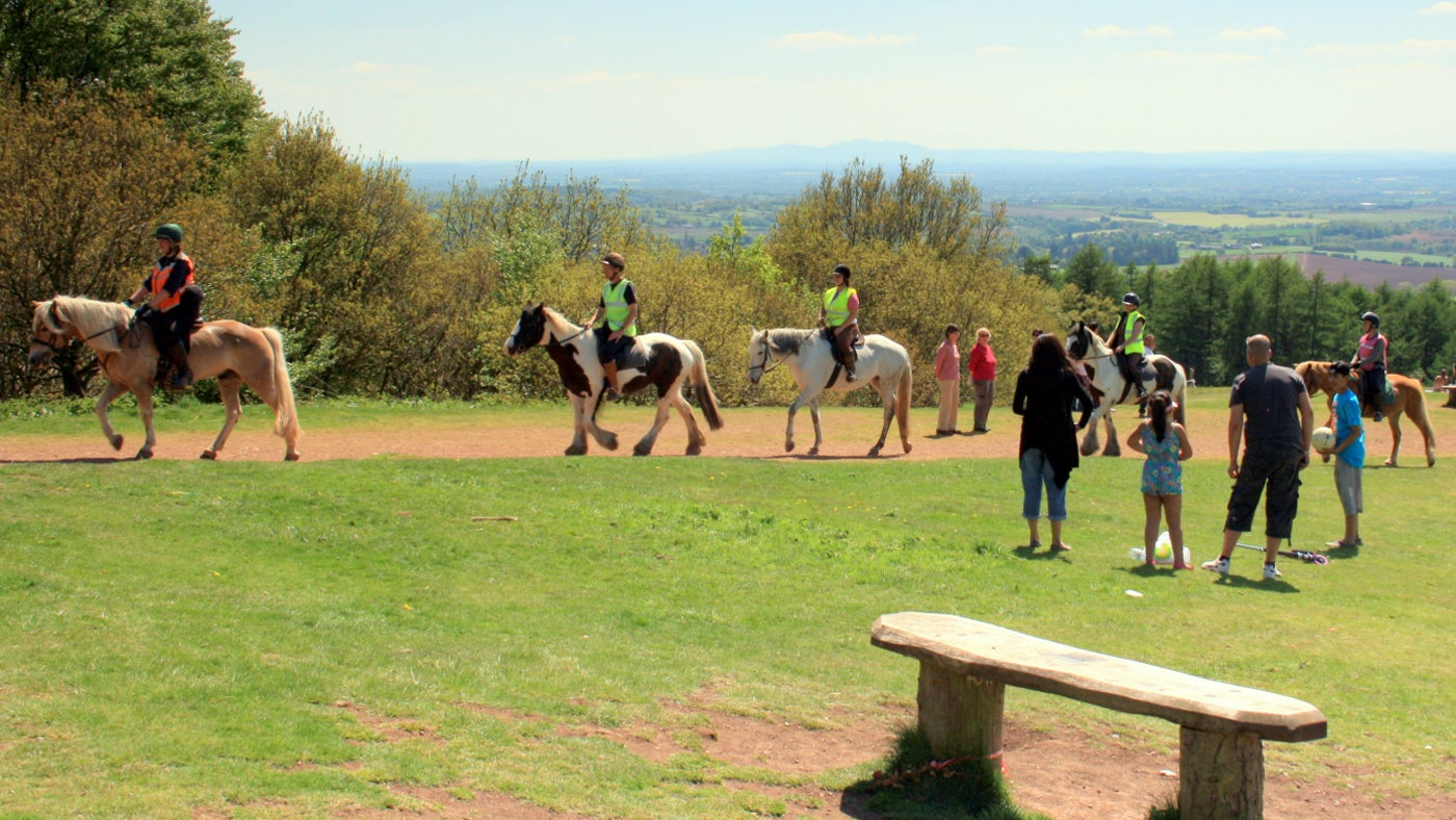 Horses and their riders walking along the top of Clent Hill on a sunny day