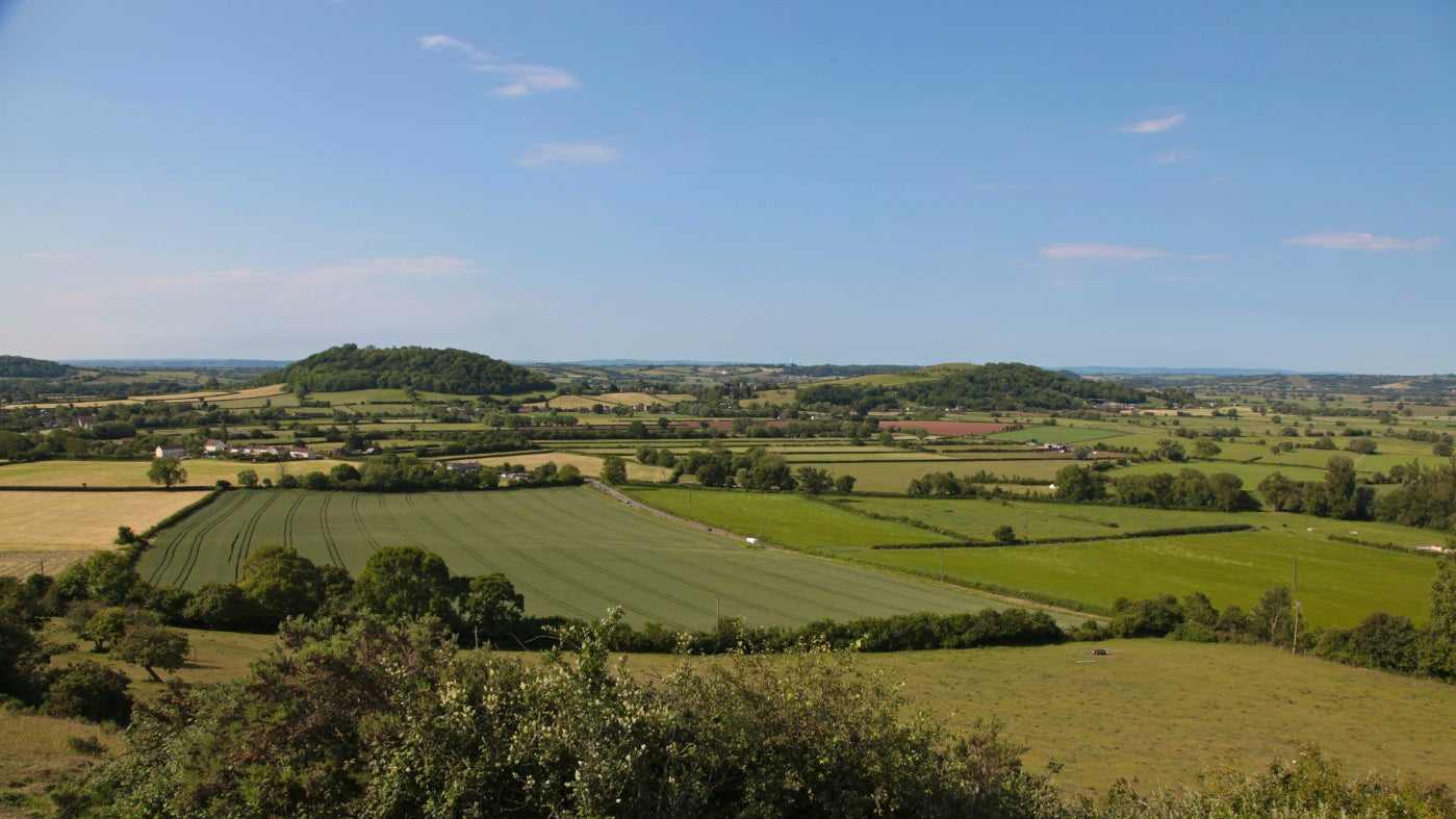 Collard Hill, Somerset