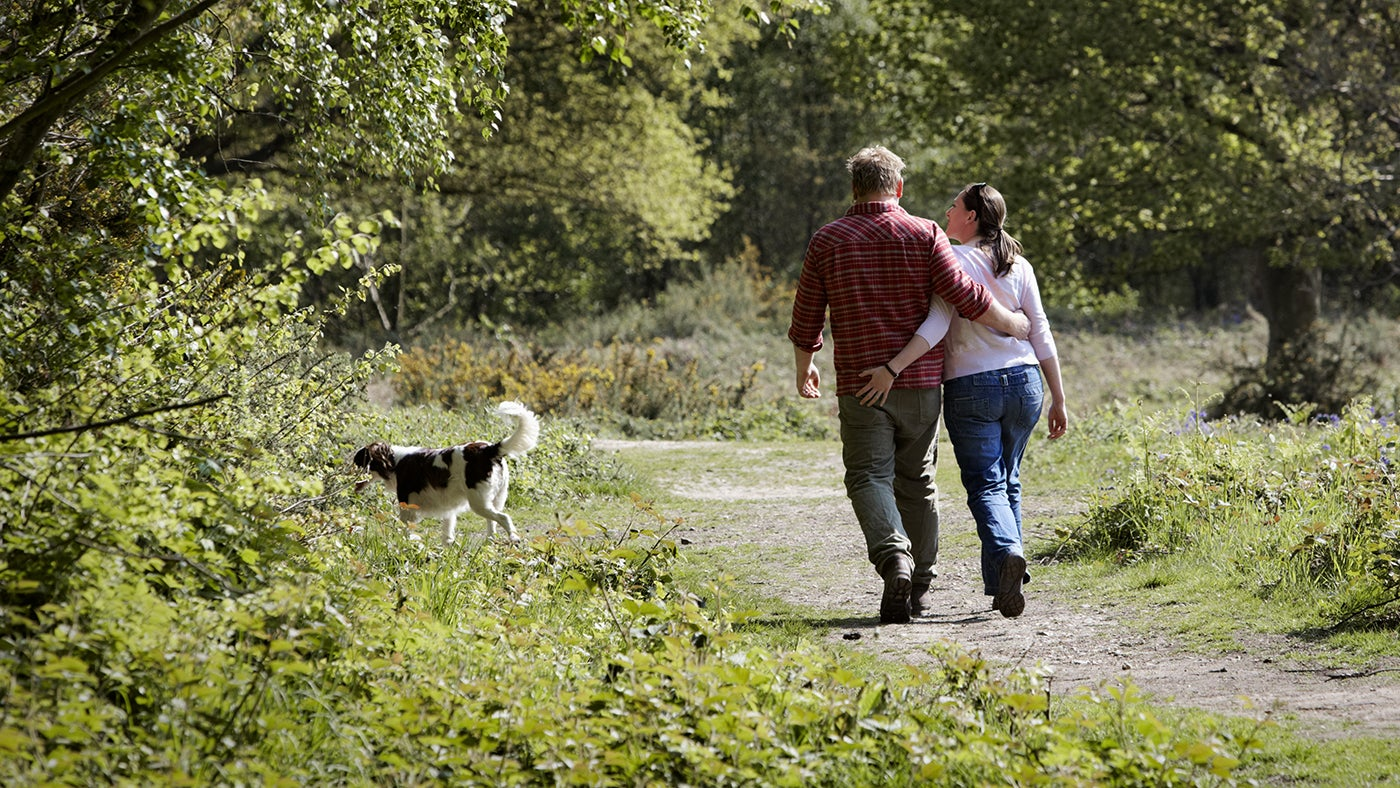 Couple walking with their dog on Danbury Common, Essex.