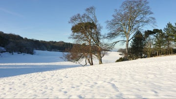 Snow providing a picture perfect landscape in the parkland.