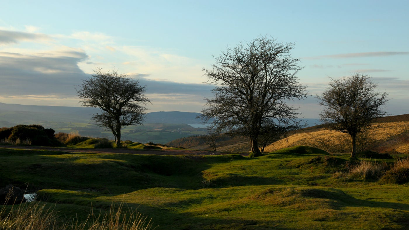 Views of the Quantock Hills, Somerset