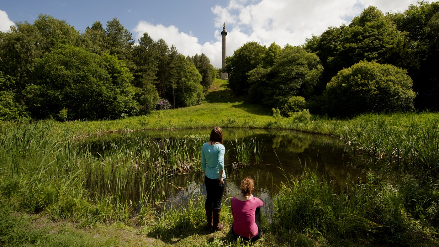 Visitors looking towards the Column to Liberty at Gibside, Tyne & Wear