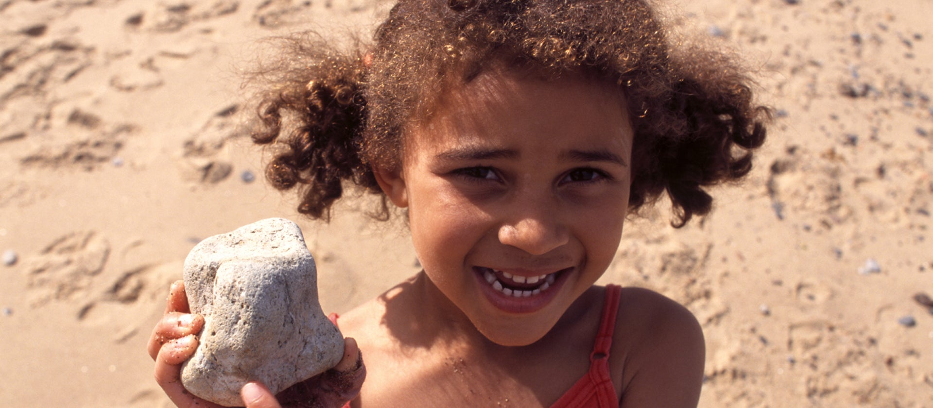 Hunt for fossils and bones | 50 things | National Trust