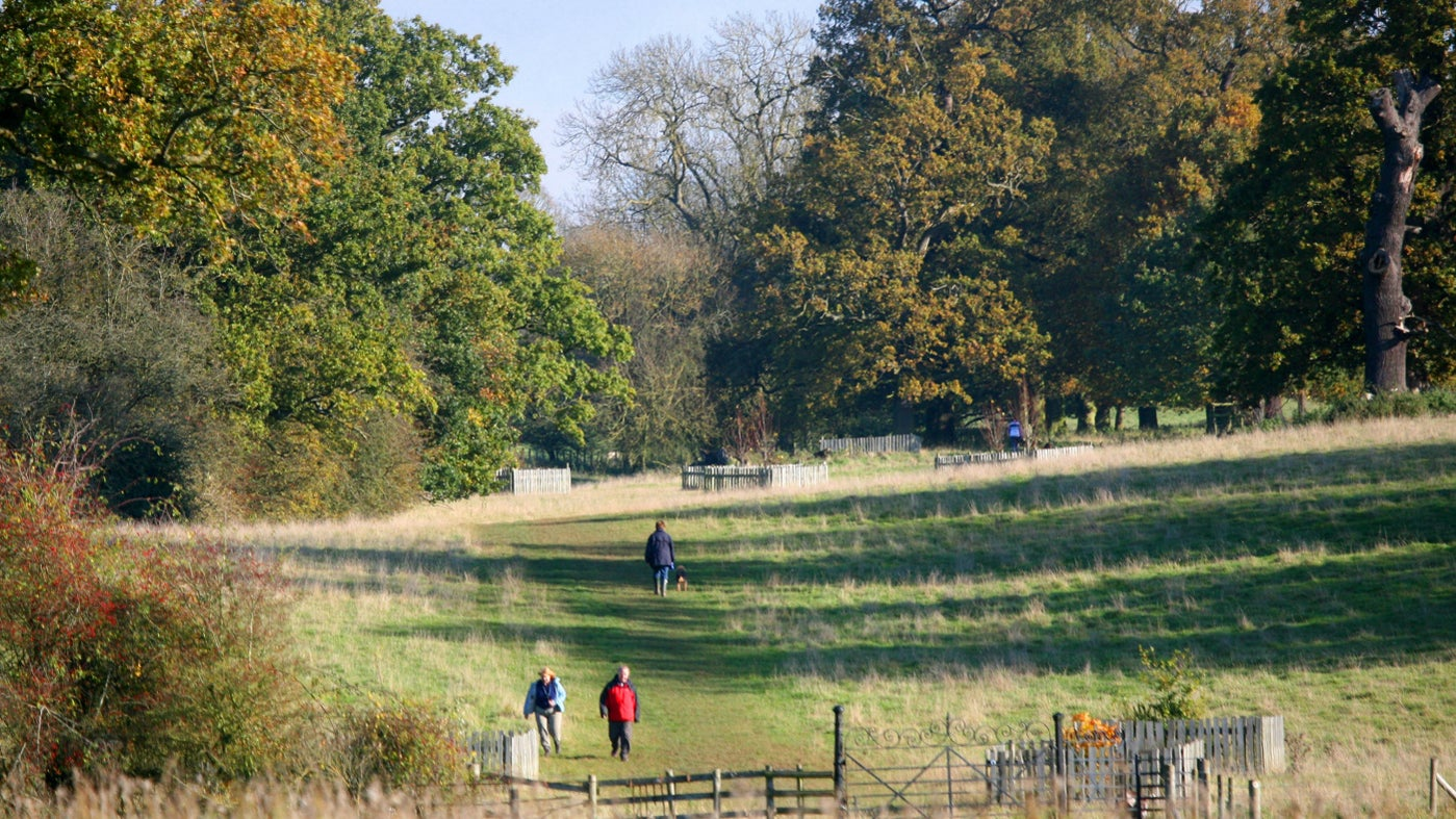 Visitors walking down the grass slope towards the gates in the parkland