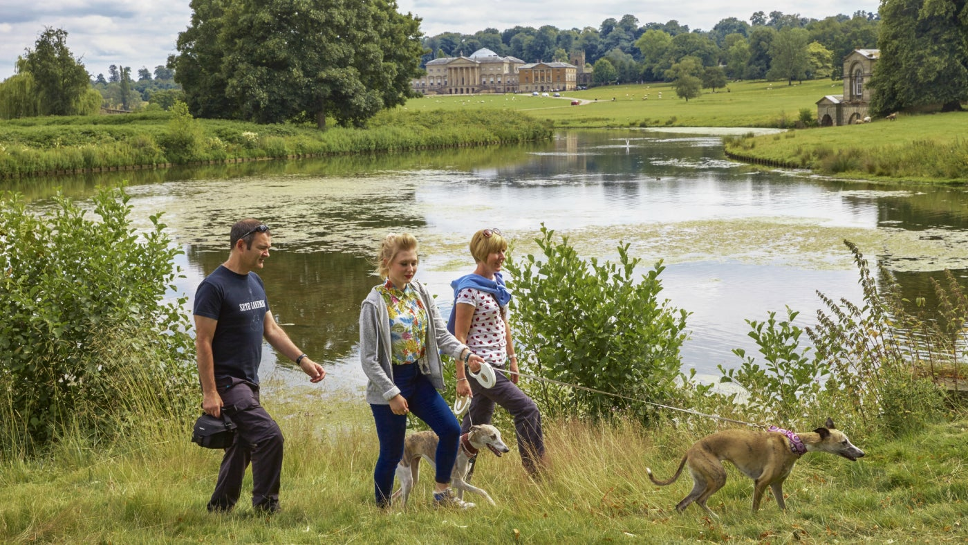 Visitors walking their dogs near a lake at Kedleston Hall