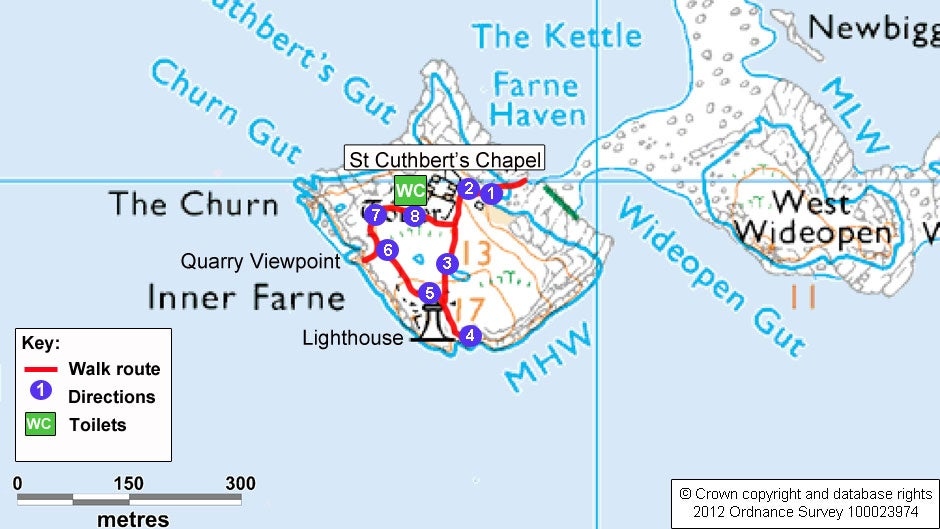 Best Time To Visit Farne Islands