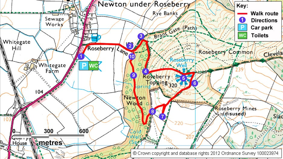 Roseberry Topping and Newton Wood walk   National Trust