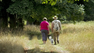 Visitors walking with their dogs in the grounds of Morden Hall Park, London