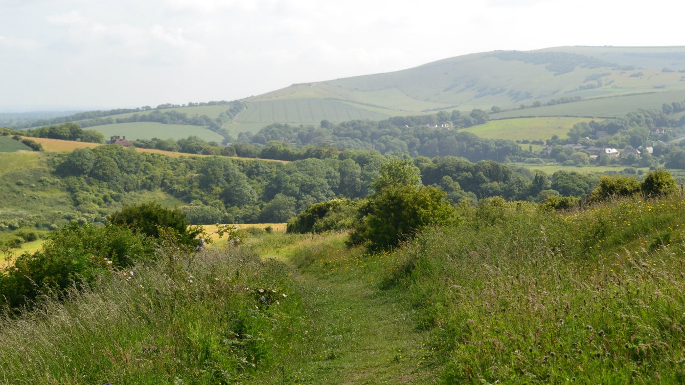 Enjoy far reaching views from  the peace and shelter of Cradle Valley