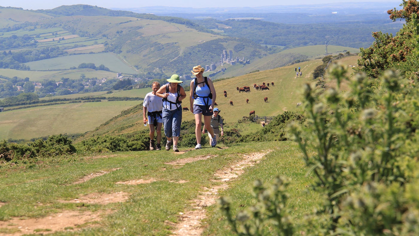 Walkers in the Purbeck Hills near Corfe Castle