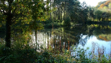 The mill pond at Quarry Bank, Styal, Cheshire