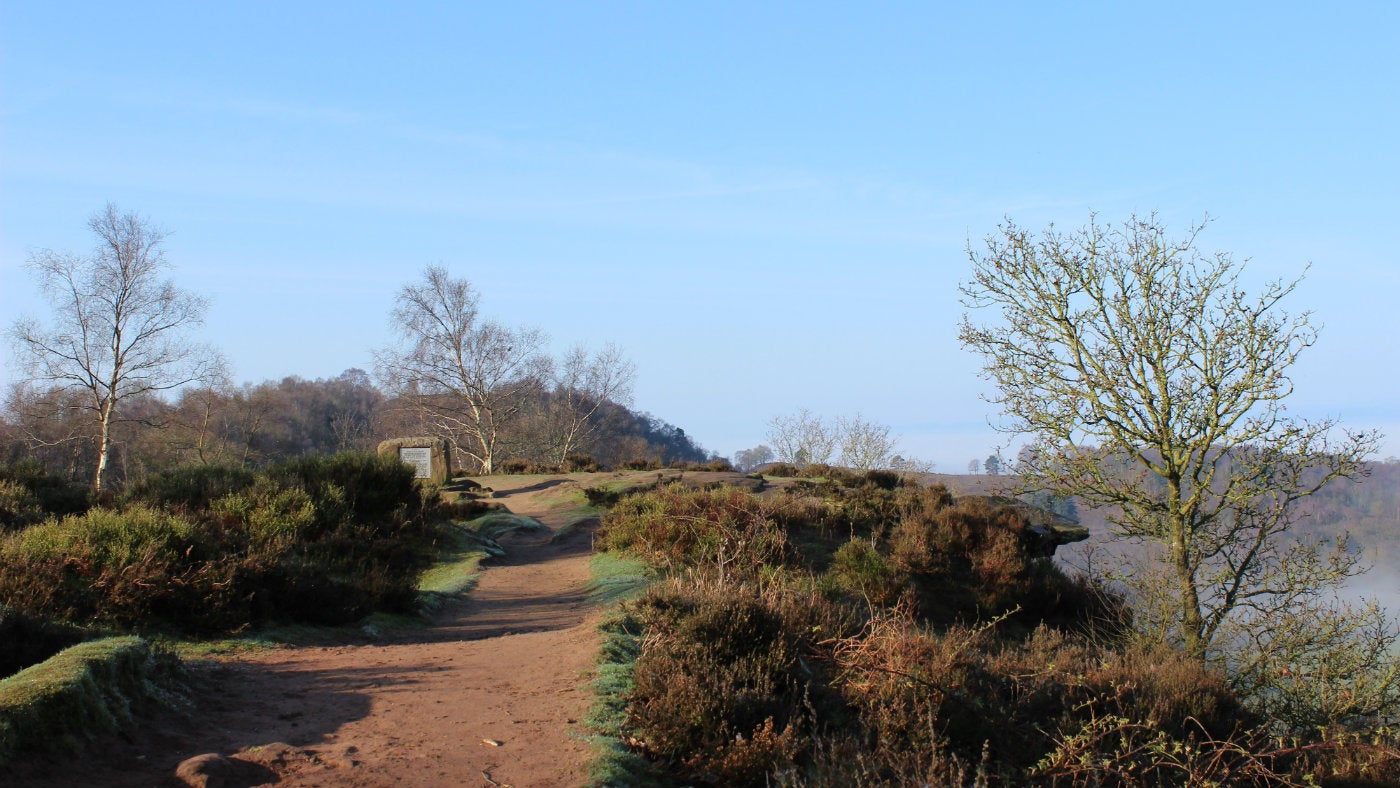 A view of Bickerton Hill, Cheshire
