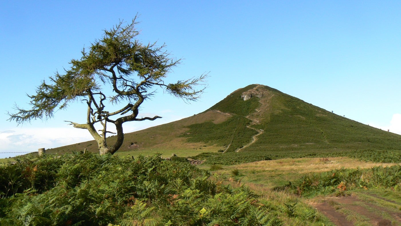 A stone path winds up the south eastern slopes of Roseberry Topping