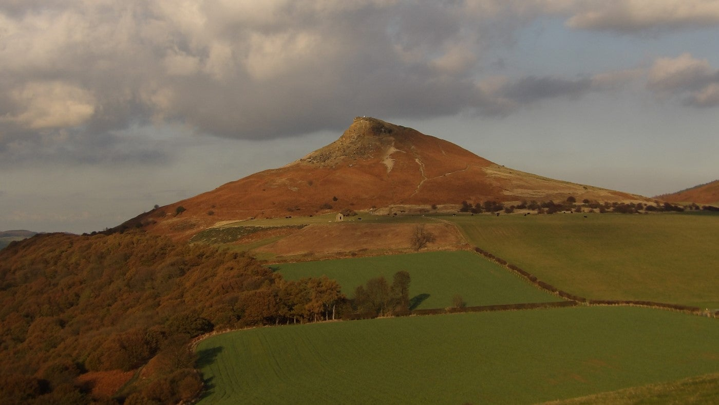 Roseberry Topping across autumnal treetops and fields
