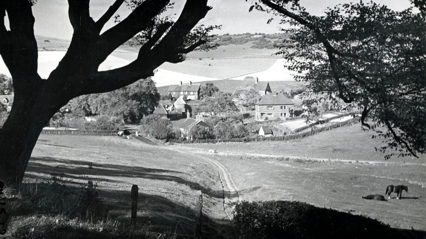 A black and white view taken in the 1960s of Saddlescombe Farm from the road, framed by a tree, with rolling hills on the horizon