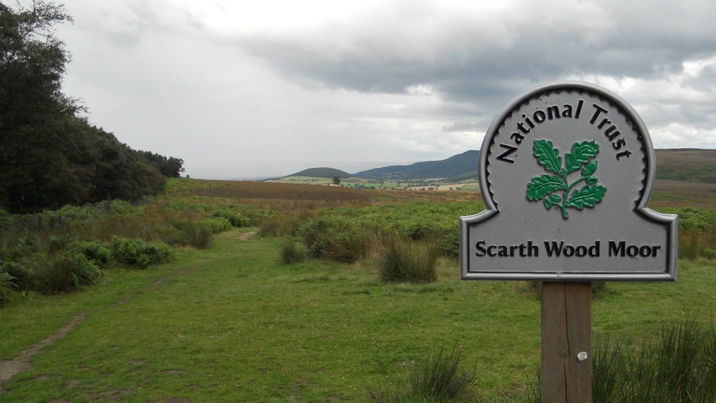 View across Scarth Wood Moor near Osmotherley