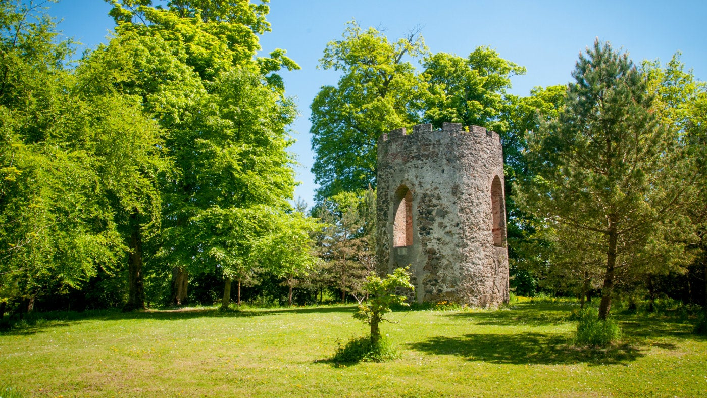 Stone tower among trees