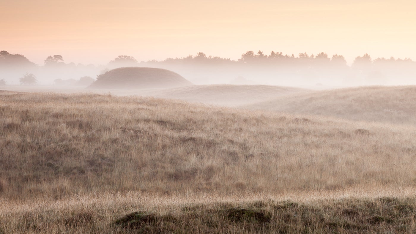 Sutton Hoo burial mounds in the mist