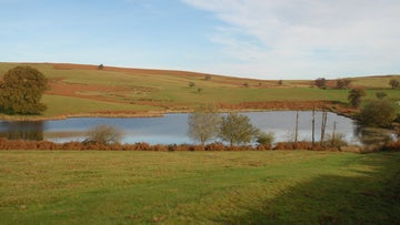 The Begwns pond surrounded by open common