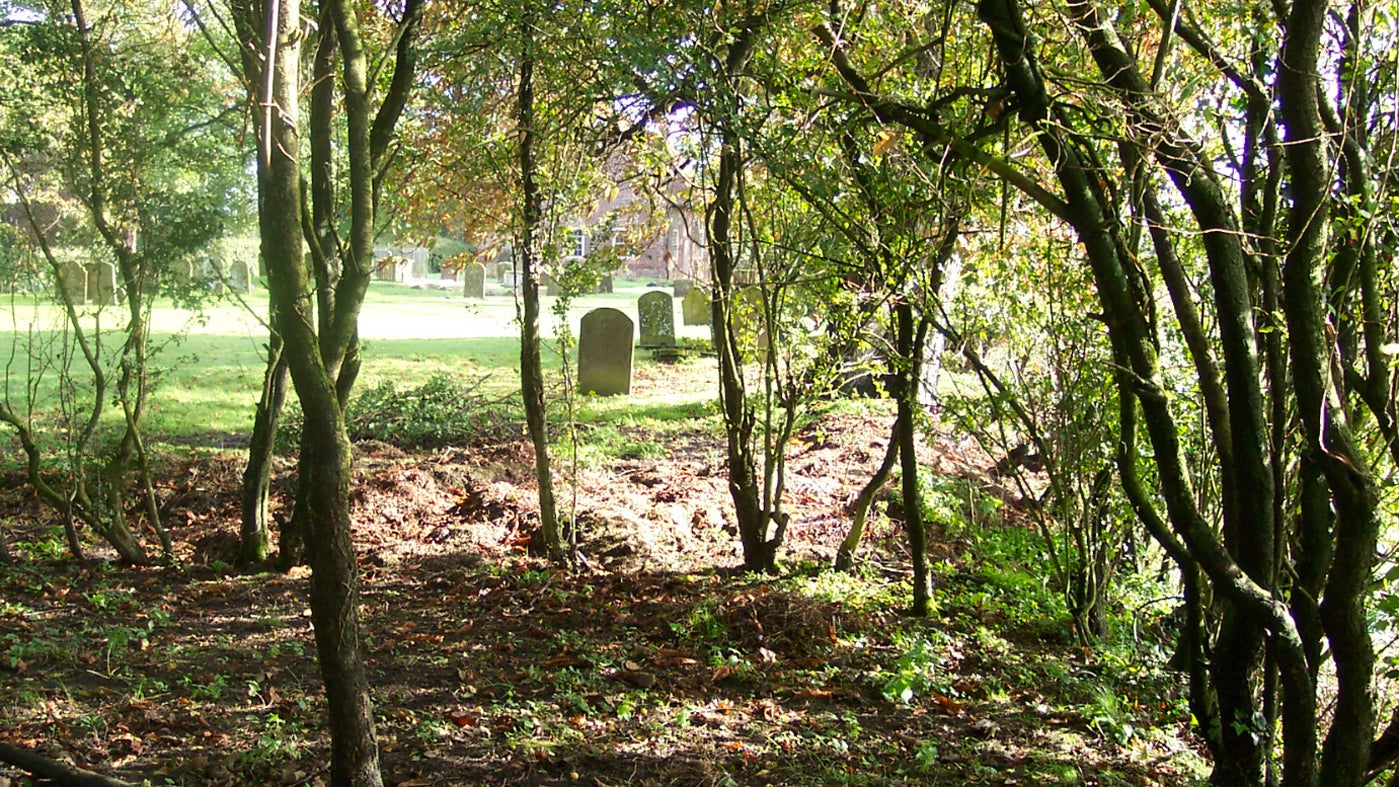 Trees and graves in the grounds of Monksthorpe Chapel